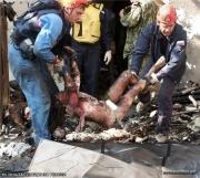 фото жертв беслан